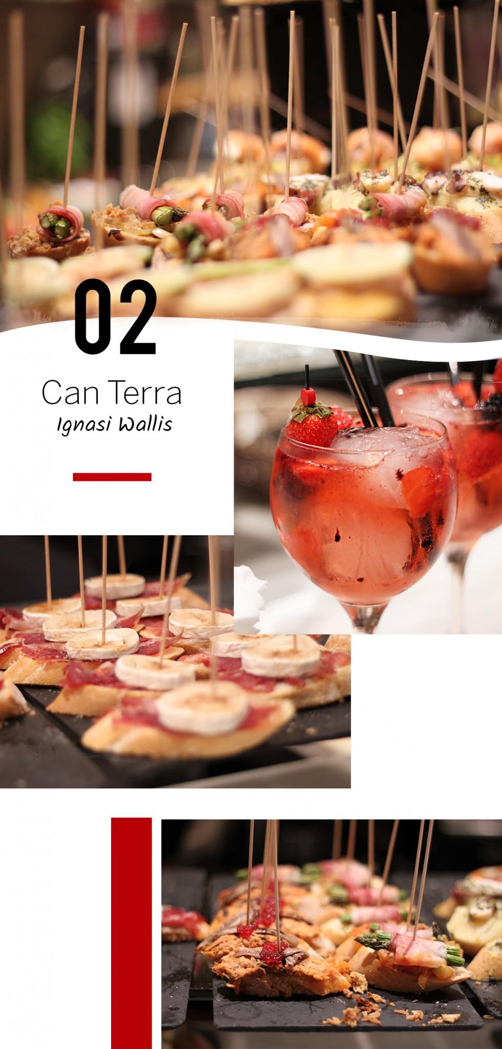 Can Terra restaurant ibiza