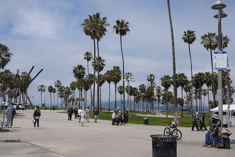 city-guide-venice-beach