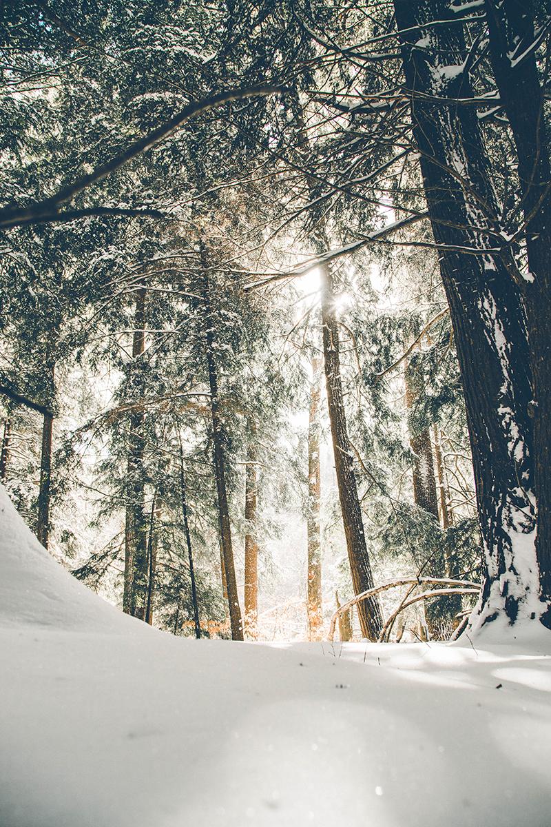 20raisons-aimer-hiver